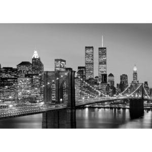 FOTOMURAL MANHATTAN SKYLINE AT NIGHT 957