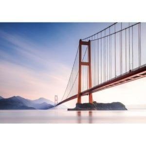 FOTOMURAL XIHOU BRIDGE 972