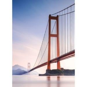 FOTOMURAL XIHOU BRIDGE 862