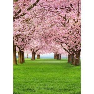 FOTOMURAL CHERRY TREES 385