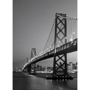 FOTOMURAL SAN FRANCISCO SKYLINE 387