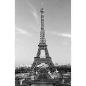 FOTOMURAL LA TOUR EIFFEL 604