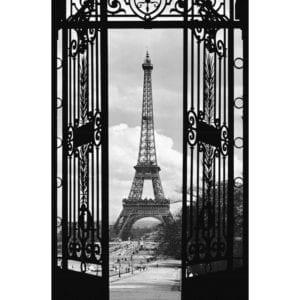 FOTOMURAL LA TOUR EIFFEL, 1909 644