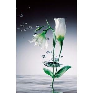 FOTOMURAL CRYSTAL FLOWERS 673