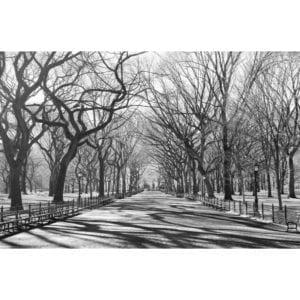 FOTOMURAL POETS WALK NY 607