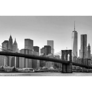 FOTOMURAL NEW YORK 622