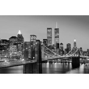 FOTOMURAL MANHATTAN SKYLINE AT NIGHT 625